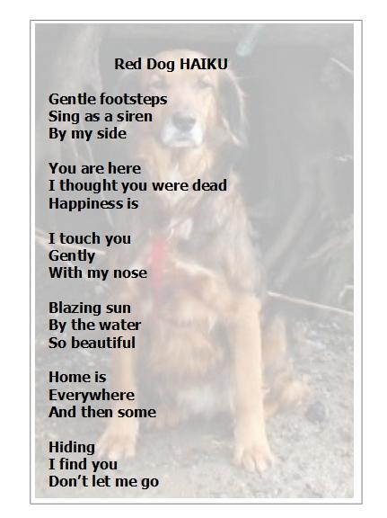reddoghaiku